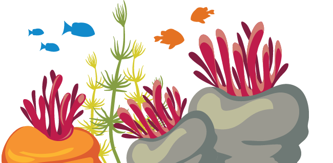 coral reef cartoon graphic